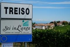 Treiso01