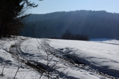 10_Hegendorf_Feb_2015