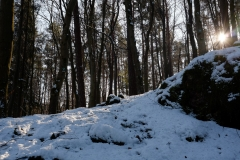 18_Hegendorf_Feb_2015