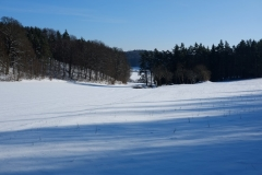 31_Hegendorf_Feb_2015