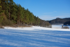 33_Hegendorf_Feb_2015