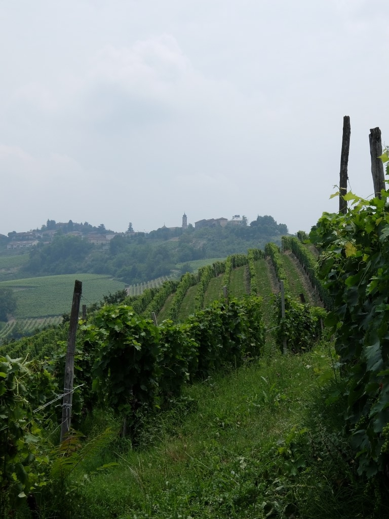 Piemont2016-101