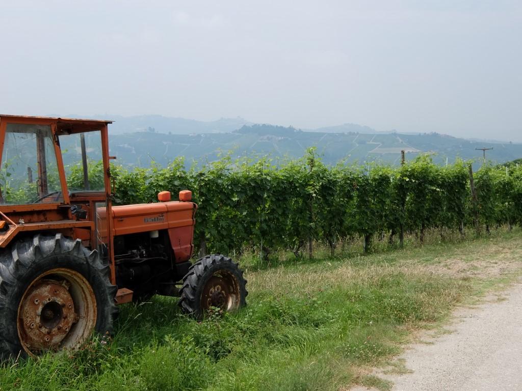 Piemont2016-102