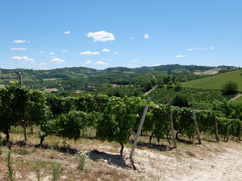 Piemont2016-193
