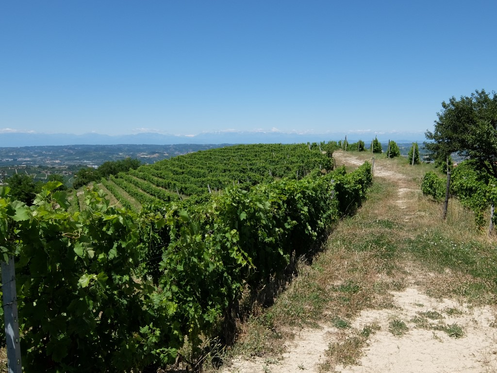 Piemont2016-194