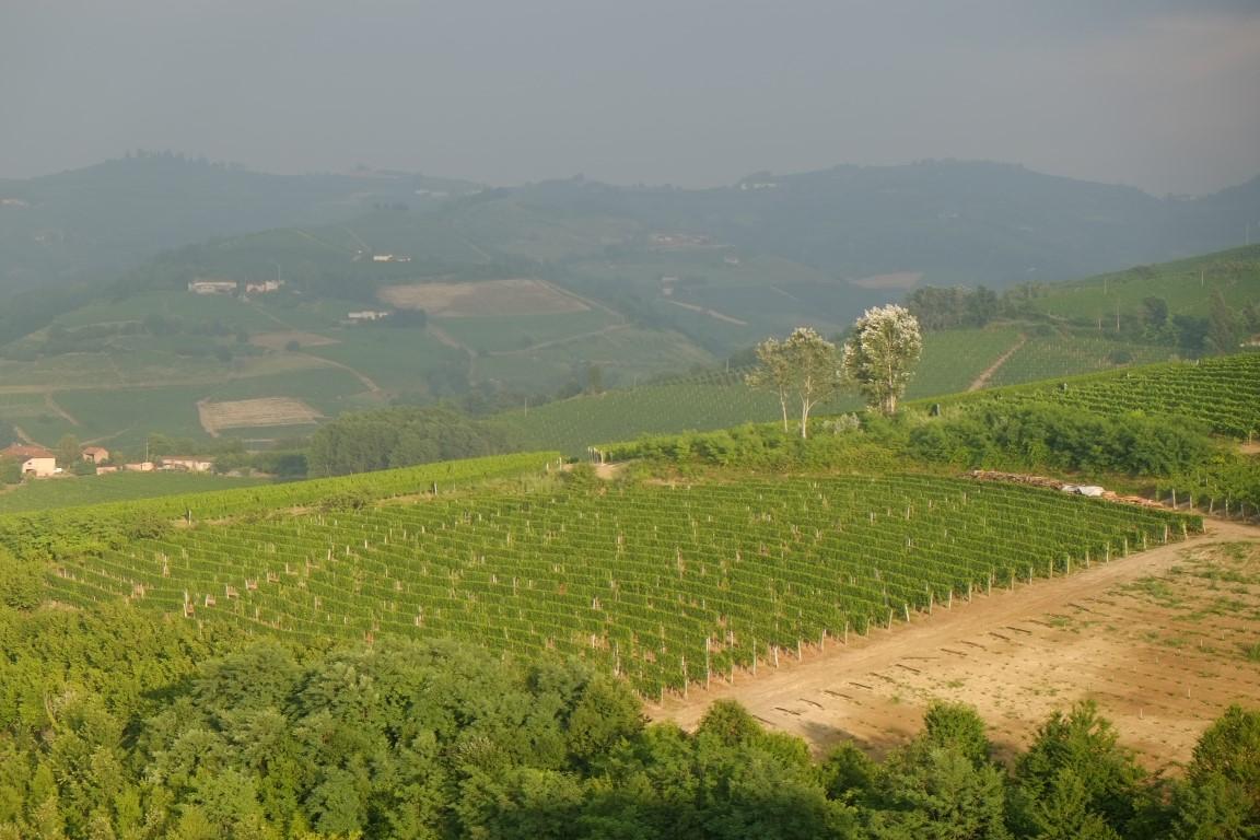 Piemont2016-051