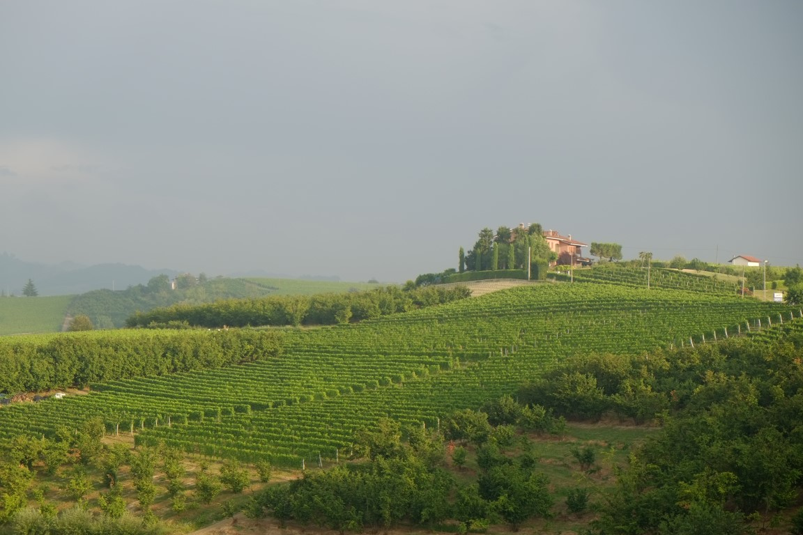 Piemont2016-053