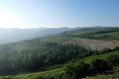 Piemont2016-015
