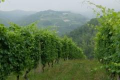 Piemont2016-017