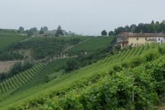 Piemont2016-025
