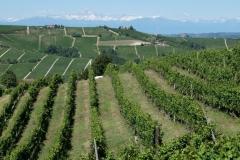 Piemont2016-183