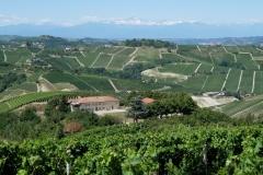 Piemont2016-185