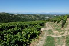 Piemont2016-186