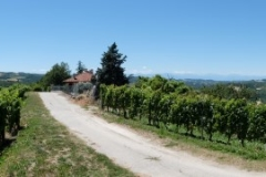Piemont2016-190