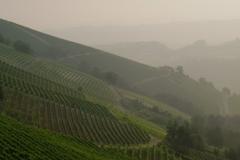 Piemont2016-034