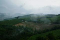 Piemont2016-154