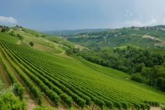 Piemont2016-155
